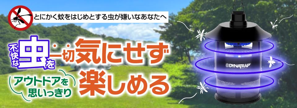 電脳サーキット クリーンエネルギー
