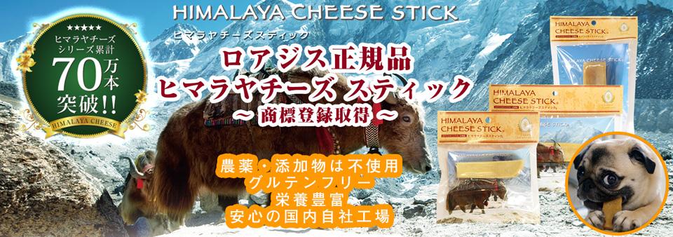 ベジフルオーガニック 愛犬用有機クッキー