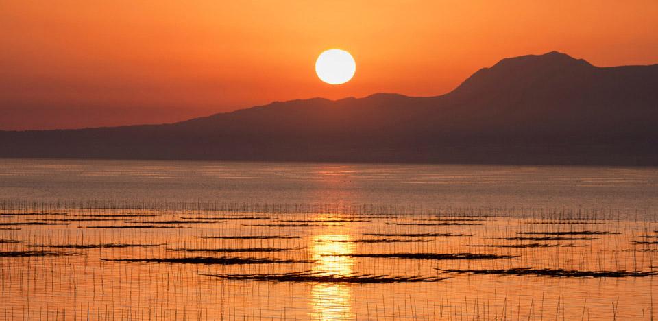 味付海苔・焼海苔の工場直売【丸...