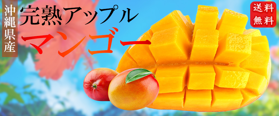 食欲の秋ギフト特集|通販ショップ 沖縄ま〜さん市場