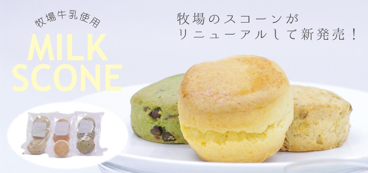 日本で唯一、ローマ教皇へ提供したケーキ「法王のティラミス」